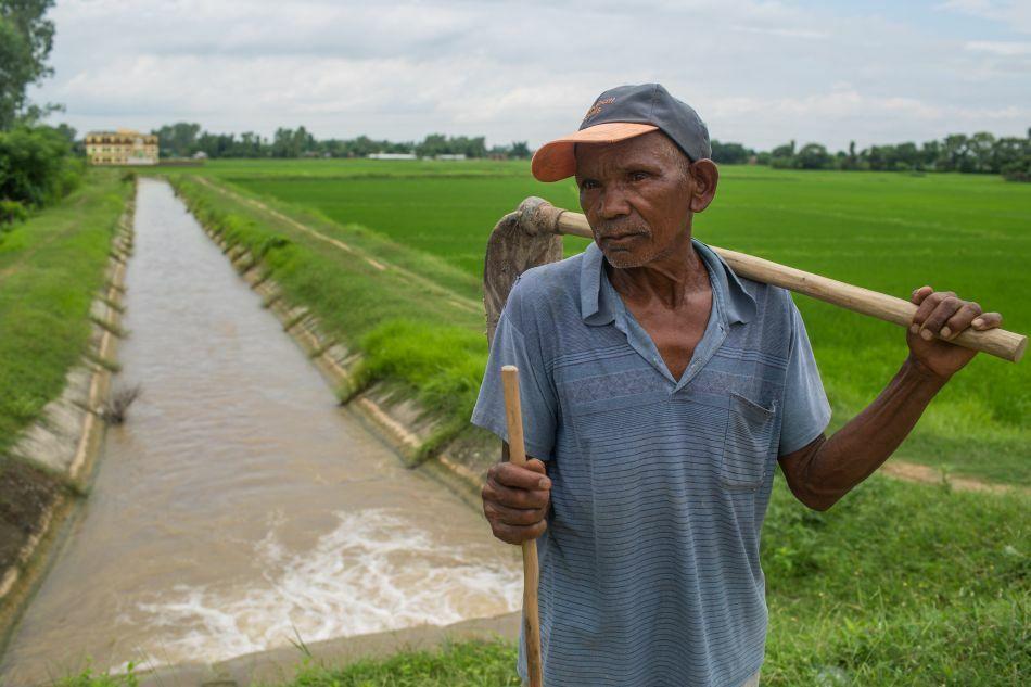 A farmer at his paddy field in Bar Bardiya Municipality in Bardiya District, Nepal. © Nabin Baral / IWMI