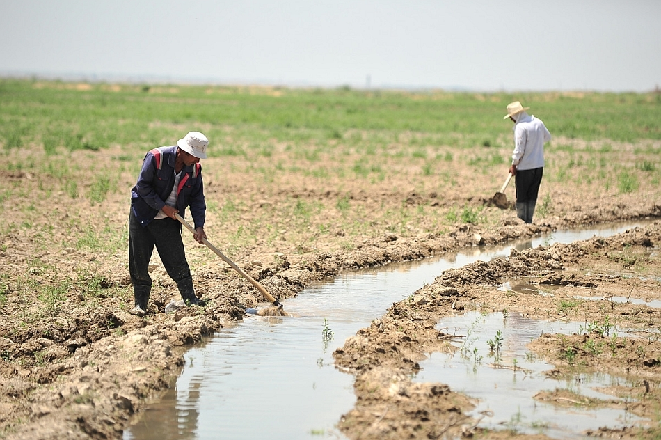 Farmer fixes edges of the waterway in a farm field in Central Asia. © Neil Palmer / IWMI