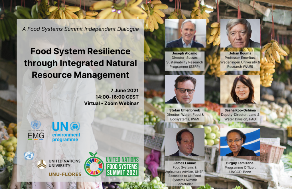 Flyer: Food System Resilience through Integrated Natural Resource Management